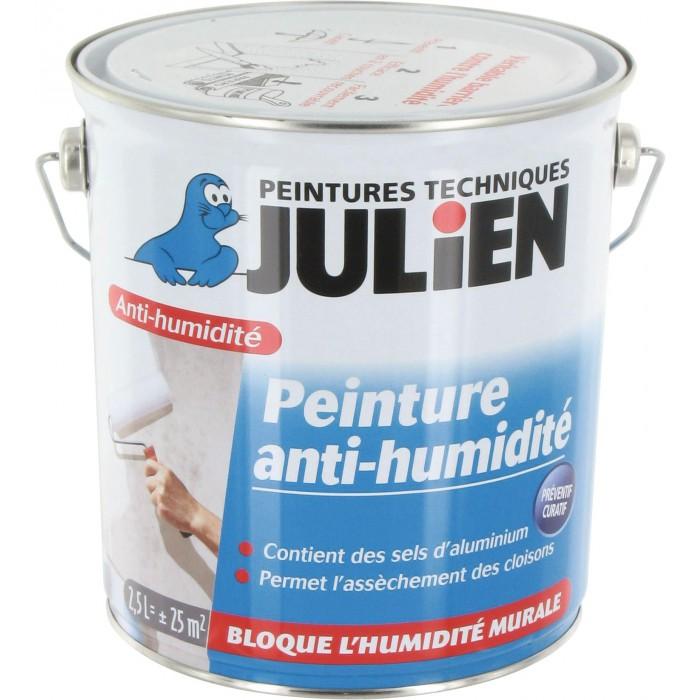 Peinture Anti Humidité Avec Sels D Aluminium 2 5 L Blanc Satin Julien