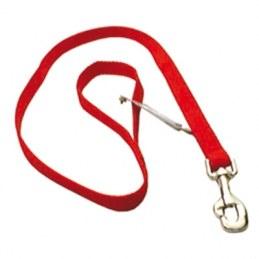 Laisse polypro rouge en nylon pour chien - ZOLUX