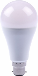 Ampoule LED - Standard - B22 - 16W/100W - DHOME