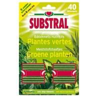 Batonnets nutritifs pour plantes vertes - 40 Batonnets - SUBSTRAL