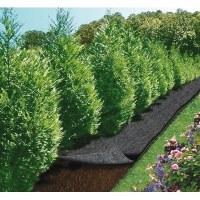 Feutre de jardin - 5 x 0.9 m - CAP VERT