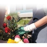 Gants pour rosiers - Qualité supérieure - T7 - CAP VERT