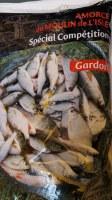 Amorces Gardons (Spécial compétition)