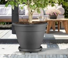 Support de pot à roulettes - planttaxi universel - 35 cm - Gris - ELHO