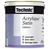 Peinture acrylique satinée - 0.5 L - perle - TECHNIC