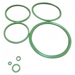 Joints Viton pour pulvérisateur C12 de Pulsen - CAP VERT