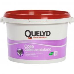 Colle pour dalle et plafond - 4 Kg - QUELYD