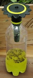 Piège à guêpe pour bouteille de soda - Wasp Trap