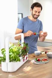 Potager d'intérieur - Click & Grow - Smart Garden 9 - Blanc - EMSA