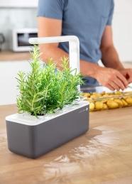Potager d'intérieur - Click & Grow - Smart Garden 3 - Gris - EMSA