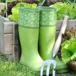 Bottes et chaussures de jardin