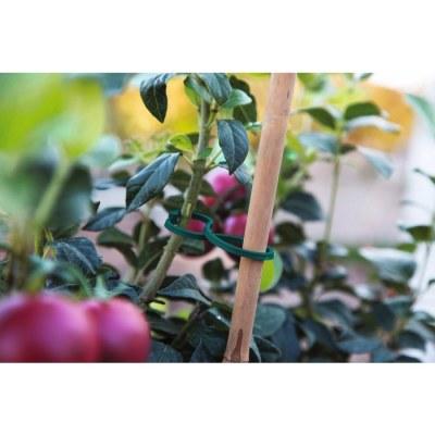 Clip de fixation pour plants de tomates - Lot de 25 - CATRAL