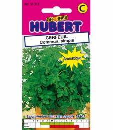 Graines de Cerfeuil Commun Simple - 4 Grs - GRAINES HUBERT