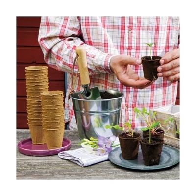 16 pots biodégradables de 8 cm de diamètre - 100 % biodégradables - Pour semis - ROMBERG